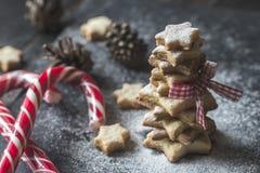 Σπιτικό χριστουγεννιάτικο δέντρο Στοκ εικόνες με δικαίωμα ελεύθερης χρήσης