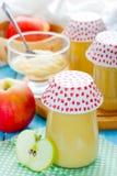 Σπιτικό applesauce από τα οργανικά μήλα Στοκ Εικόνες
