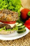 Σπιτικό burger για τη χρονο διατροφή Στοκ εικόνες με δικαίωμα ελεύθερης χρήσης