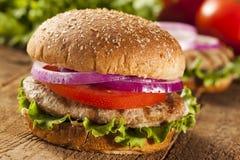 Σπιτικό Burger της Τουρκίας σε ένα κουλούρι Στοκ Φωτογραφίες