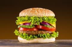 Σπιτικό burger Στοκ φωτογραφίες με δικαίωμα ελεύθερης χρήσης