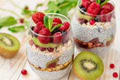 Σπιτικό chia πουτίγκας με τα φρούτα Στοκ Εικόνες