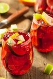 Σπιτικό Fruity ισπανικό κόκκινο Sangria Στοκ εικόνες με δικαίωμα ελεύθερης χρήσης