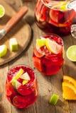 Σπιτικό Fruity ισπανικό κόκκινο Sangria Στοκ Φωτογραφία