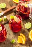 Σπιτικό Fruity ισπανικό κόκκινο Sangria Στοκ Εικόνα
