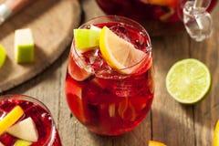 Σπιτικό Fruity ισπανικό κόκκινο Sangria Στοκ Φωτογραφίες