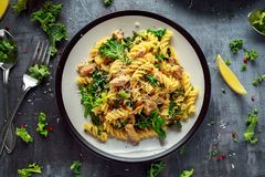 Σπιτικό fusilli ζυμαρικών με το κοτόπουλο, το πράσινο τυρί του Kale, σκόρδου, λεμονιών και παρμεζάνας Υγιή εγχώρια τρόφιμα Στοκ Εικόνες