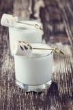 Σπιτικό milkshake με ψημένο marshmallow Στοκ φωτογραφίες με δικαίωμα ελεύθερης χρήσης