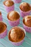 σπιτικό muffin Στοκ Φωτογραφίες