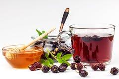 Σπιτικό rosehip τσάι Παραδοσιακή θεραπεία για τα κρύα και τη γρίπη Ξηρά μούρα του ξηρού θάμνου σε ένα άσπρο υπόβαθρο Καυτό rosehi Στοκ Εικόνες