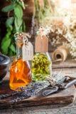 Σπιτικό tincture στα μπουκάλια με τα χορτάρια και το οινόπνευμα Στοκ Φωτογραφίες