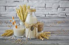 Σπιτικό vegan γάλα του βλαστημένου σίτου Στοκ εικόνες με δικαίωμα ελεύθερης χρήσης