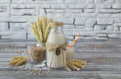 Σπιτικό vegan γάλα του βλαστημένου σίτου Στοκ Εικόνες