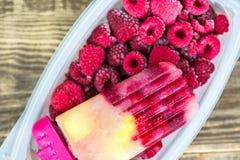 Σπιτικό Vegan Popsicle από τον παγωμένους χυμό και τα μούρα της Apple Στοκ Φωτογραφία