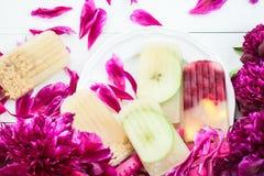 Σπιτικό Vegan Popsicle από τον παγωμένους χυμό και τα μούρα της Apple Στοκ φωτογραφία με δικαίωμα ελεύθερης χρήσης
