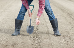 Σπορά των σπόρων στο χώμα Στοκ Εικόνες