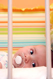 σπορείο μωρών Στοκ φωτογραφίες με δικαίωμα ελεύθερης χρήσης