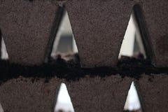σπορόφυτα δοχείων τύρφης Εγκαταστάσεις μωρών που σπέρνουν, δίσκοι μαύρων τρυπών για τα γεωργικά σπορόφυτα Η φύτευση άνοιξη νωρίς στοκ φωτογραφία με δικαίωμα ελεύθερης χρήσης