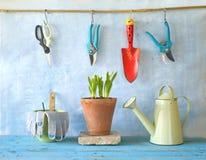 Σπορόφυτα λουλουδιών και εργαλεία κηπουρικής, Στοκ Εικόνες