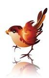 σπουργίτι πουλιών Στοκ εικόνα με δικαίωμα ελεύθερης χρήσης