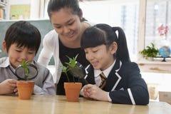 Σπουδαστές και δάσκαλος που εξετάζουν τις σε δοχείο εγκαταστάσεις μέσω της ενίσχυσης - γυαλί στοκ εικόνες