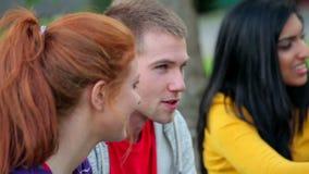 Σπουδαστές που έχουν μια συνομιλία στη χλόη απόθεμα βίντεο