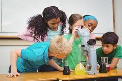 Σπουδαστές που χρησιμοποιούν τις κούπες επιστήμης και ένα μικροσκόπιο Στοκ Φωτογραφία