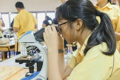 Σπουδαστές στο εργαστήριο επιστήμης στοκ φωτογραφία με δικαίωμα ελεύθερης χρήσης