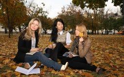 σπουδαστές τρία Στοκ Εικόνες