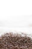 Σπόροι λιναριού Στοκ Εικόνες