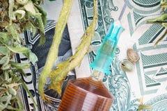 Σπόροι κάνναβης συρίγγων και ξηρά φύλλα κάνναβης στα τραπεζογραμμάτια δολαρίων Στοκ εικόνα με δικαίωμα ελεύθερης χρήσης