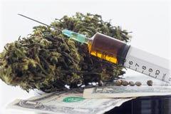 Σπόροι κάνναβης συρίγγων και ξηρά φύλλα κάνναβης στα τραπεζογραμμάτια δολαρίων Στοκ φωτογραφία με δικαίωμα ελεύθερης χρήσης