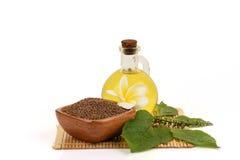 Σπόροι και έλαιο Perilla frutescens Λ Perilla Britton στοκ φωτογραφίες με δικαίωμα ελεύθερης χρήσης