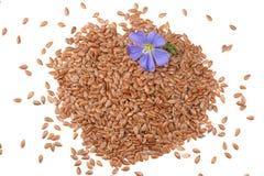 Σπόροι λιναριού με το λουλούδι που απομονώνεται στο άσπρο υπόβαθρο flaxseed ή λιναρόσπορος δημητριακά Τοπ όψη στοκ εικόνα με δικαίωμα ελεύθερης χρήσης