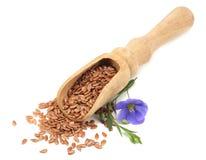 σπόροι λιναριού στο ξύλινο κουτάλι με το λουλούδι που απομονώνεται στο άσπρο υπόβαθρο flaxseed ή λιναρόσπορος δημητριακά στοκ εικόνα