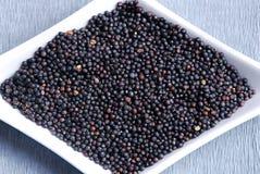 σπόροι μαύρης μουστάρδας Στοκ Εικόνες
