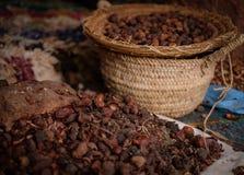 Σπόροι του μαροκινού argan δέντρου σε μια αγορά Στοκ εικόνες με δικαίωμα ελεύθερης χρήσης