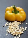 Σπόροι του πιπεριού ή του καψικού κουδουνιών με ένα κίτρινο κομμάτι περικοπών με το μίσχο πέρα από το σκοτεινό υπόβαθρο Στοκ φωτογραφία με δικαίωμα ελεύθερης χρήσης