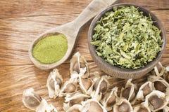 Σπόροι, φύλλα και moringa σκόνη - Moringa oleifera Στοκ Εικόνα