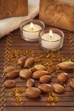 Σπόροι argan με το φως και το σαπούνι Στοκ Εικόνες