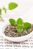 Σπόροι Chia Στοκ εικόνα με δικαίωμα ελεύθερης χρήσης