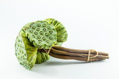 Σπόροι Lotus στοκ φωτογραφία