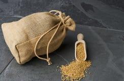 σπόρος μουστάρδας στοκ εικόνα με δικαίωμα ελεύθερης χρήσης