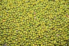 Σπόρος των πράσινων φασολιών στην αγορά στοκ φωτογραφία με δικαίωμα ελεύθερης χρήσης