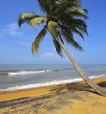 Σρι Λάνκα Στοκ Εικόνες