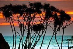 Σρι Λάνκα, Bentota Στοκ φωτογραφία με δικαίωμα ελεύθερης χρήσης