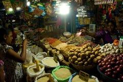 Σρι Λάνκα - Tangalle Στοκ φωτογραφίες με δικαίωμα ελεύθερης χρήσης