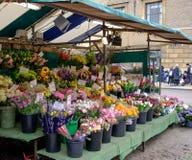 Στάβλος και δάσος λουλουδιών που βλέπουν σε μια αγγλική πόλη αγοράς Στοκ Φωτογραφία