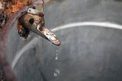 στάζοντας βρύση σφενδάμνο&u Στοκ Φωτογραφία
