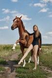 Στάσεις αναβατών κοριτσιών δίπλα στο άλογο στον τομέα Το πορτρέτο μόδας μιας γυναίκας και οι φοράδες είναι άλογα στο χωριό στη χλ στοκ φωτογραφίες με δικαίωμα ελεύθερης χρήσης